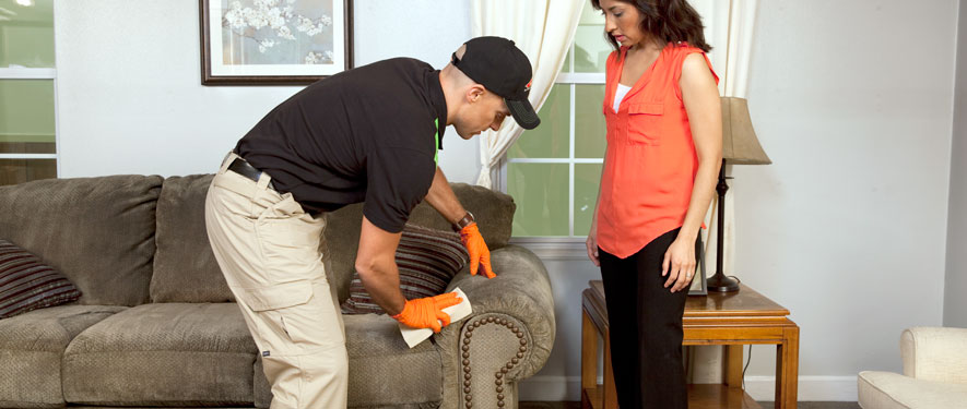 Laurel, MS carpet upholstery cleaning